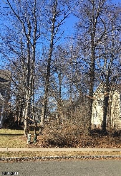 517 Edgar Rd, Westfield Town, NJ 07090 (MLS #3520784) :: Coldwell Banker Residential Brokerage