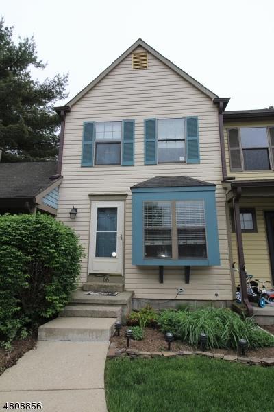 66 Wood Duck Ct, Allamuchy Twp., NJ 07840 (MLS #3522354) :: The Dekanski Home Selling Team