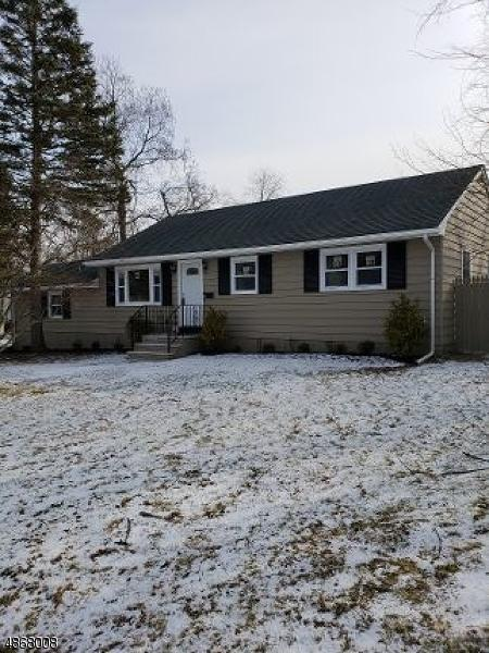 18 Mohican Pl, Parsippany-Troy Hills Twp., NJ 07034 (MLS #3529498) :: Pina Nazario