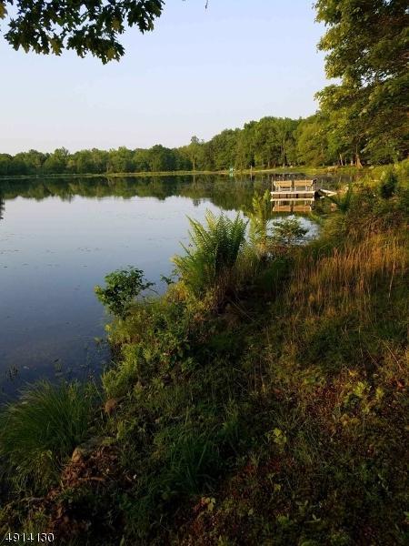 933 Plymouth Lake Dr, Stillwater Twp., NJ 07860 (MLS #3573135) :: Mary K. Sheeran Team
