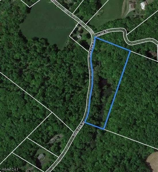 23 State Park Rd, Frelinghuysen Twp., NJ 07825 (MLS #3596341) :: The Douglas Tucker Real Estate Team LLC