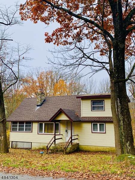 1228 Lakeside Dr East, Vernon Twp., NJ 07422 (MLS #3597590) :: The Dekanski Home Selling Team