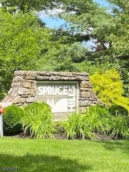 401 Spruce Hills Dr, Glen Gardner Boro, NJ 08826 (MLS #3654688) :: Coldwell Banker Residential Brokerage