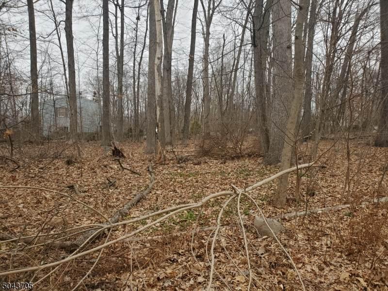 3 Wood Dale Ct - Photo 1