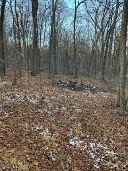 24 Danville Mountain Rd - Photo 1