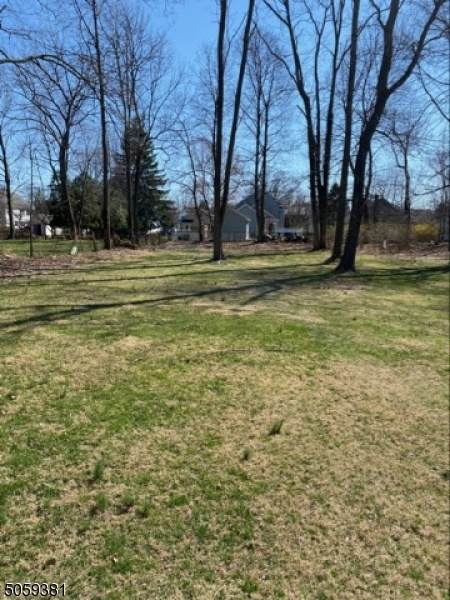 38 W Hanover Ave, Morris Twp., NJ 07950 (MLS #3703539) :: Kiliszek Real Estate Experts