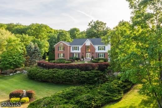 3 Butternut Ter, Kinnelon Boro, NJ 07405 (MLS #3718175) :: SR Real Estate Group