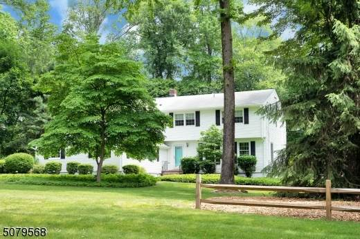 8 Blackbirch Rd, Scotch Plains Twp., NJ 07076 (#3719664) :: Daunno Realty Services, LLC