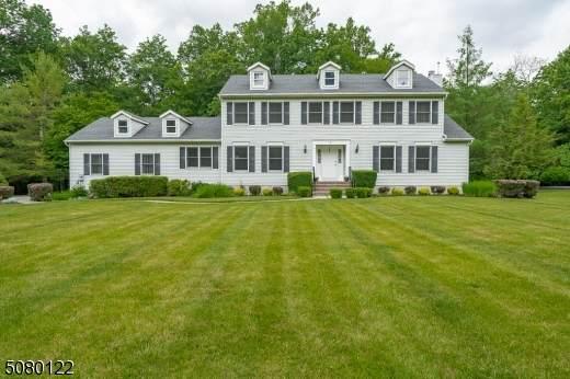31 Powhatatan Way, Mount Olive Twp., NJ 07840 (MLS #3719920) :: Kay Platinum Real Estate Group