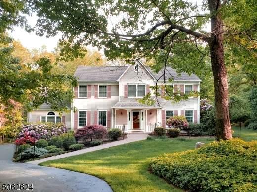 757 Backhus Estate Rd, Lebanon Twp., NJ 08826 (MLS #3719922) :: Kay Platinum Real Estate Group