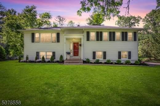 55 Sagamore Dr, New Providence Boro, NJ 07974 (MLS #3720128) :: SR Real Estate Group