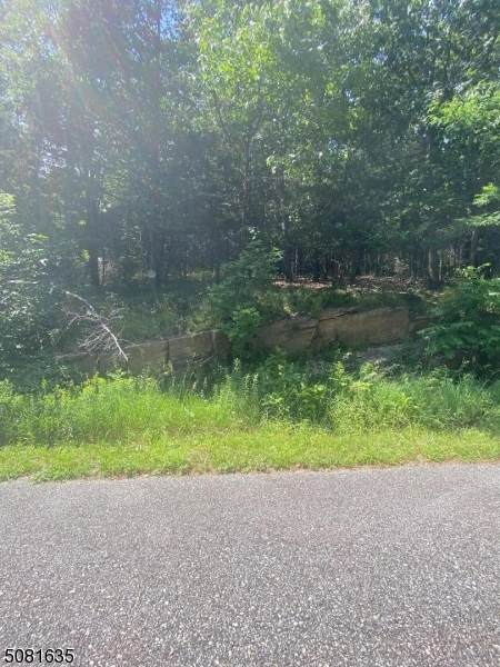 5 Vernon View Dr.West, Vernon Twp., NJ 07418 (MLS #3721282) :: RE/MAX Select