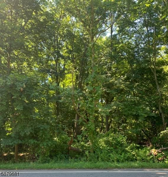 155 Changebridge Rd, Montville Twp., NJ 07045 (MLS #3725634) :: Kaufmann Realtors