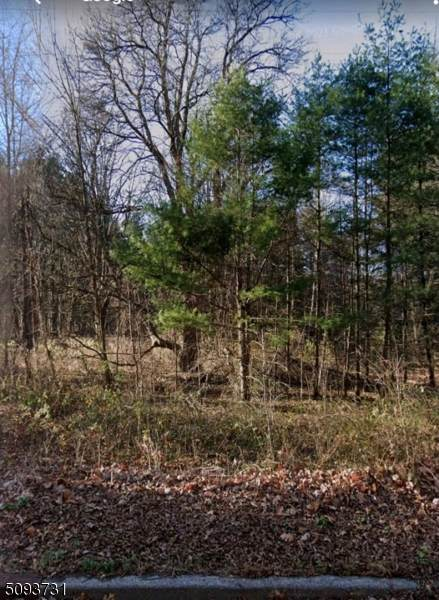 781 Berkshire Valley Rd, Jefferson Twp., NJ 07885 (MLS #3732140) :: Kaufmann Realtors