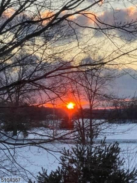 310 Lake Shore South B, Montague Twp., NJ 07827 (#3741813) :: NJJoe Group at Keller Williams Park Views Realty
