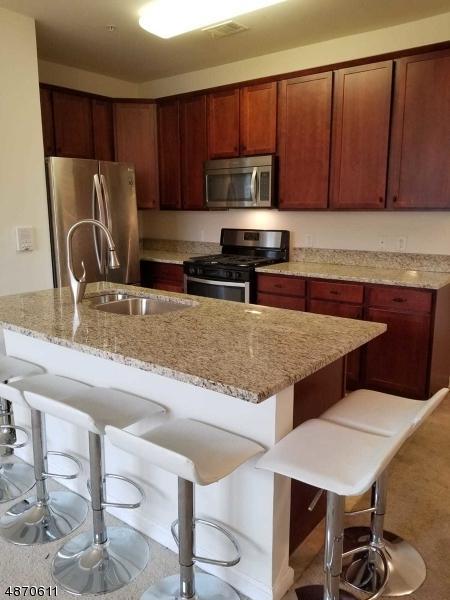 435 Van Houten Ave #209, Passaic City, NJ 07055 (MLS #3531829) :: Coldwell Banker Residential Brokerage