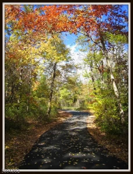 8 Sycamore Trail, Hampton Twp., NJ 07860 (#3730134) :: Rowack Real Estate Team