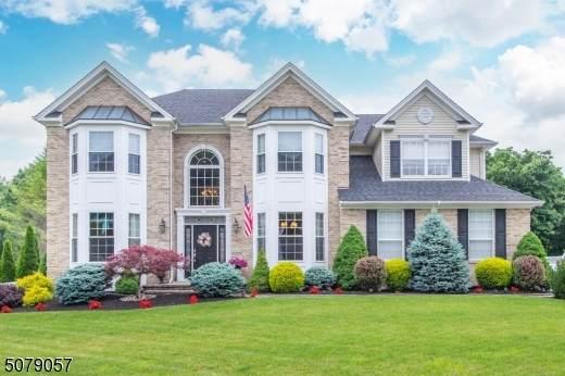 20 Saunders Ln, Mount Olive Twp., NJ 07840 (#3719186) :: Rowack Real Estate Team