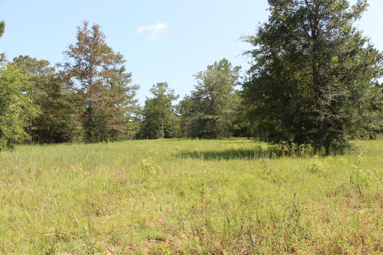Lot 1 Wolf River Rd - Photo 1