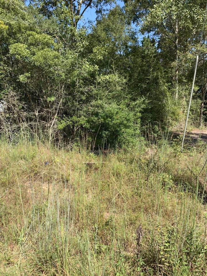 00 Lakeview Rd - Photo 1