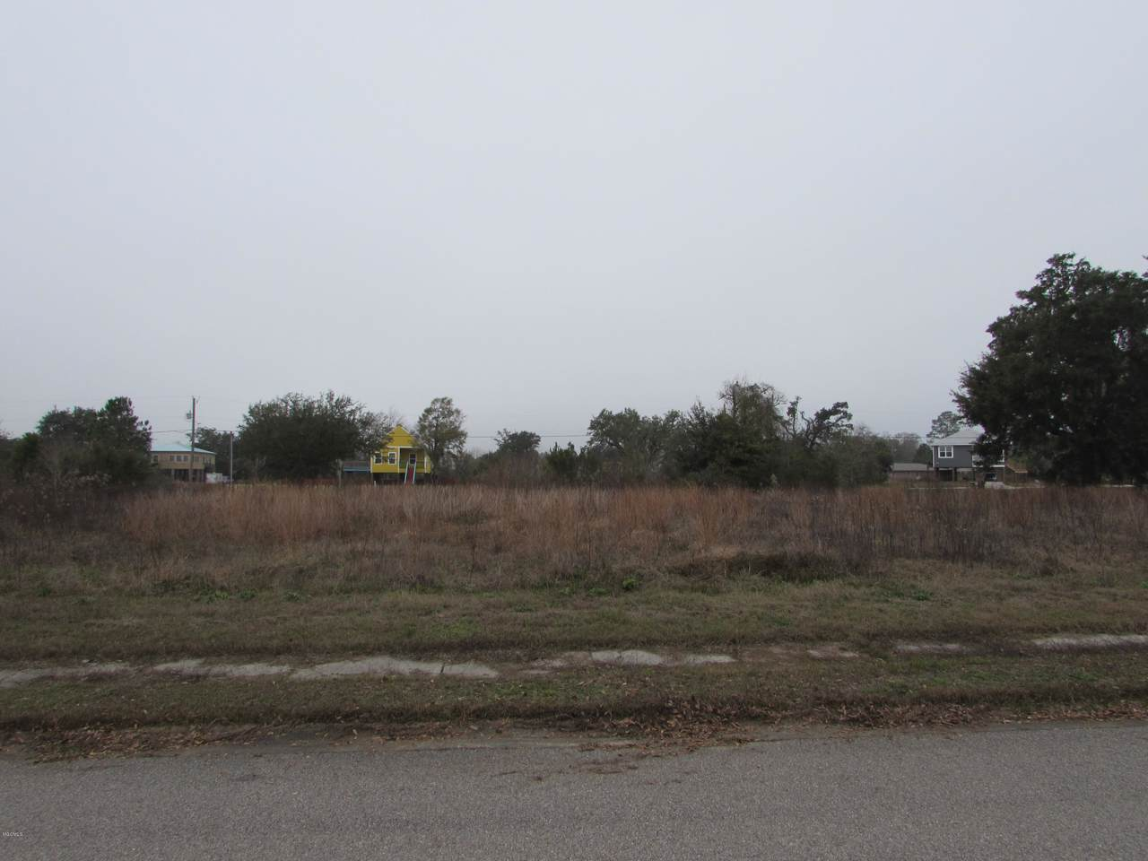 113 Destiny Oaks Dr - Photo 1