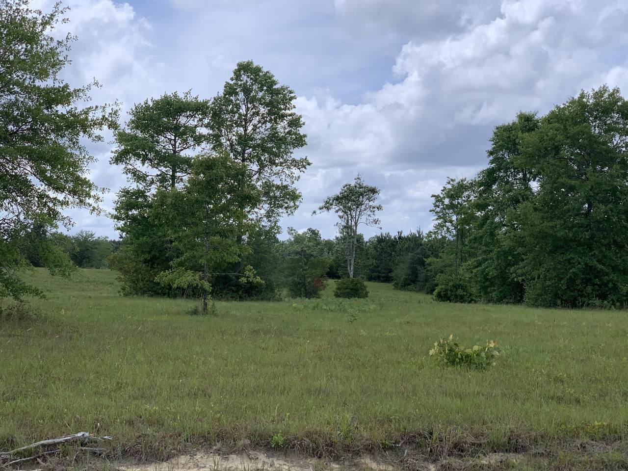 Nhn Pasture Rd - Photo 1