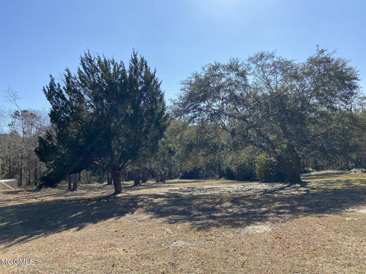 Lot 7 Magnolia Loop - Photo 1