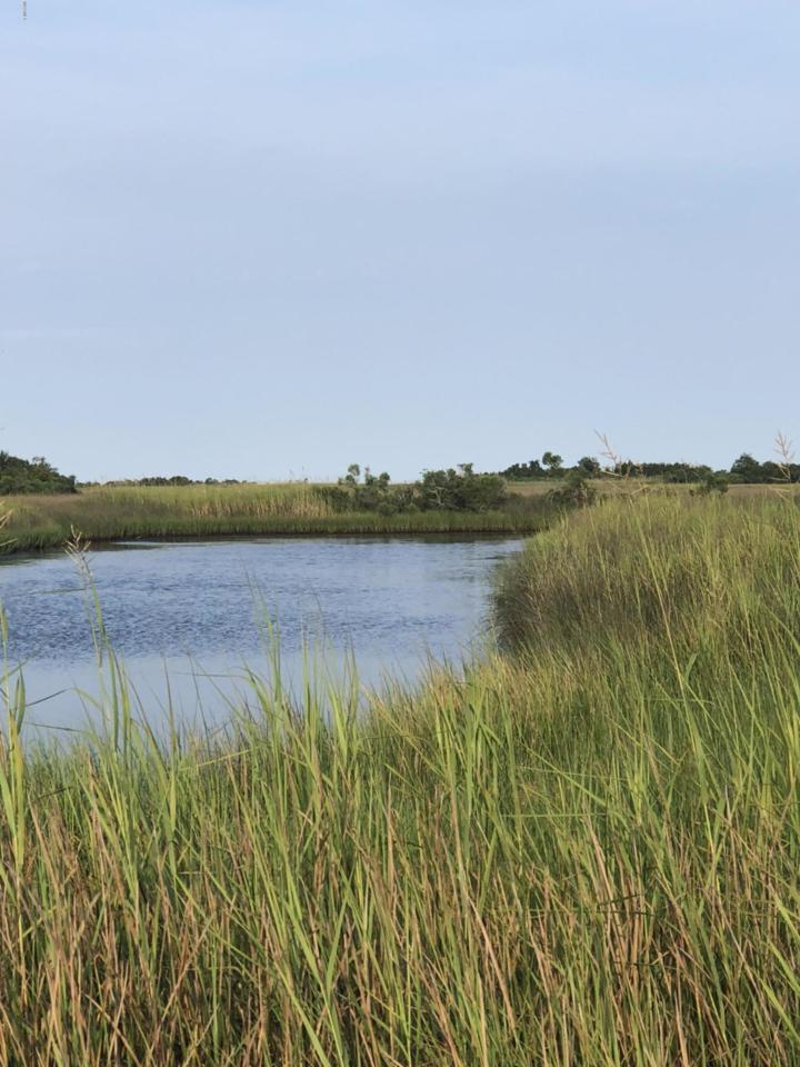 0 Herron Bay Estates Lot - Photo 1