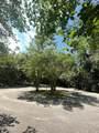 4 Mimosa Cv - Photo 44