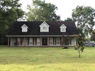 18908 Busby Rd, Vancleave, MS 39565 (MLS #320440) :: Amanda & Associates at Coastal Realty Group