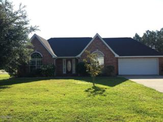 10716 Serene Cv, Vancleave, MS 39565 (MLS #320478) :: Amanda & Associates at Coastal Realty Group
