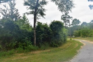 8 Acres Cammie Lane, Lucedale, MS 39452 (MLS #320719) :: Amanda & Associates at Coastal Realty Group