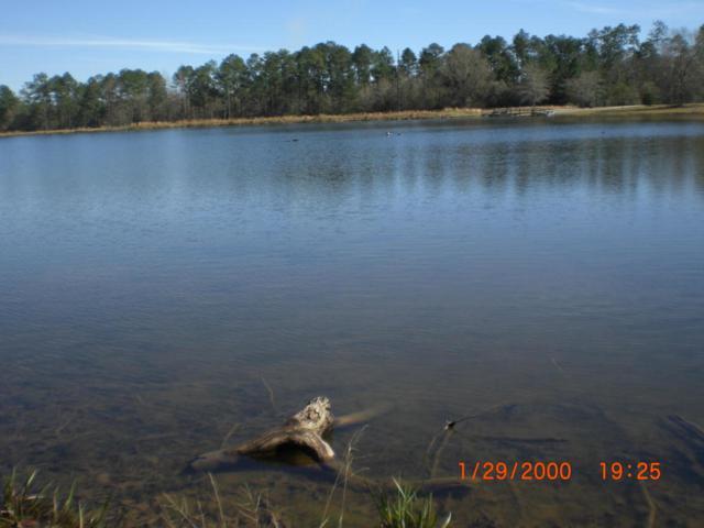 00 Lake Michael Ln, Poplarville, MS 39470 (MLS #316681) :: Amanda & Associates at Coastal Realty Group