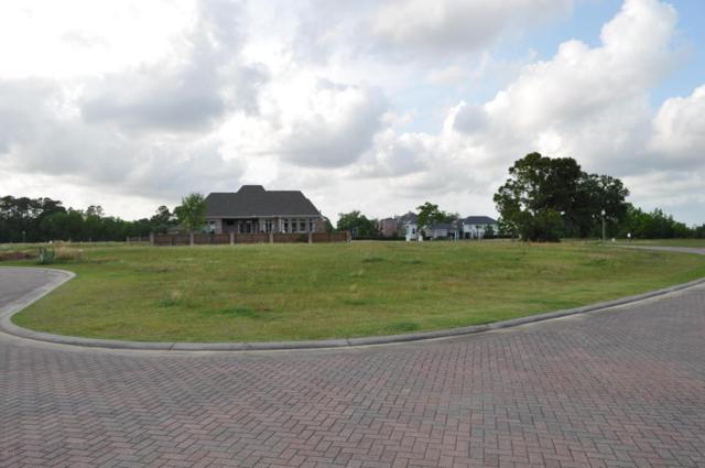 438 Goose Pointe Blvd, Biloxi, MS 39531 (MLS #319302) :: Amanda & Associates at Coastal Realty Group