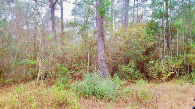 0 Main, Ocean Springs, MS 39564 (MLS #322989) :: Amanda & Associates at Coastal Realty Group
