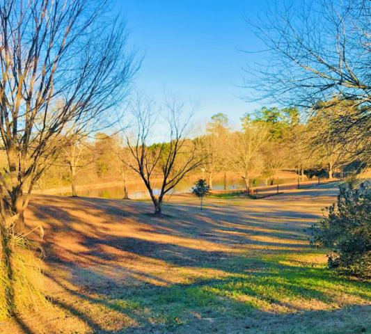 0 E Openwood Dr, Carriere, MS 39426 (MLS #329564) :: Amanda & Associates at Coastal Realty Group