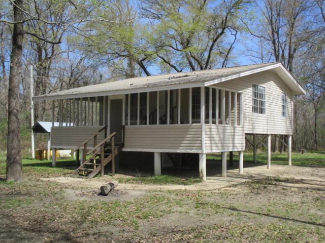 165 Plum Bluff Dr, Lucedale, MS 39452 (MLS #331295) :: Amanda & Associates at Coastal Realty Group