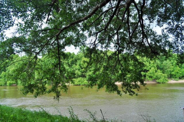 2109 Pascagoula River Dr, Lucedale, MS 39452 (MLS #334951) :: Ashley Endris, Rockin the MS Gulf Coast