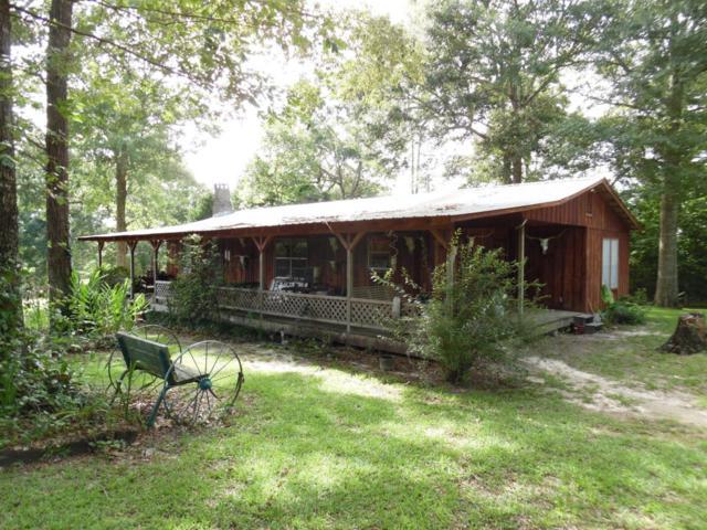 1179 Ridge Rd, Perkinston, MS 39573 (MLS #335535) :: Amanda & Associates at Coastal Realty Group