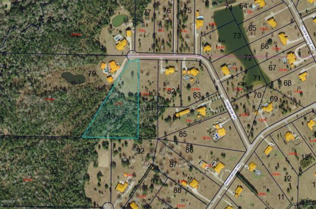 5085 Longbow Dr, Kiln, MS 39556 (MLS #336407) :: Coastal Realty Group