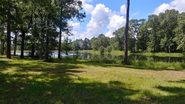 Lot 10 Oak Haven Dr, Poplarville, MS 39470 (MLS #337384) :: The Sherman Group