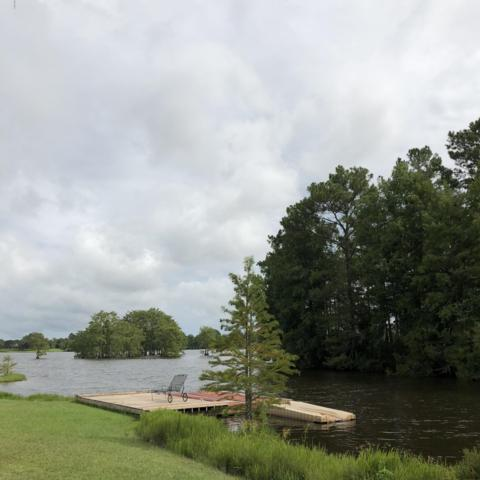 0 Treasure Point Lot 90, Carriere, MS 39426 (MLS #338225) :: Coastal Realty Group