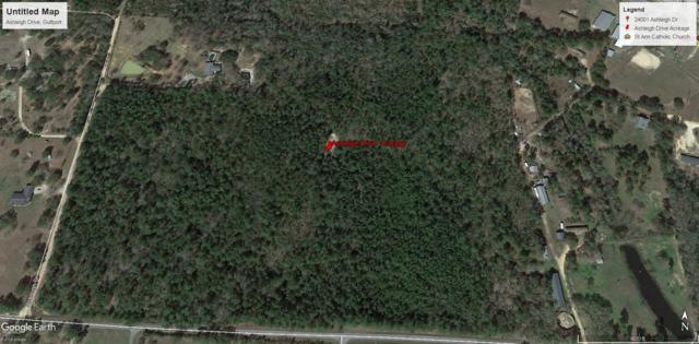 35.3 Acres Ashleigh Drive, Gulfport, MS 39503 (MLS #339153) :: The Sherman Group