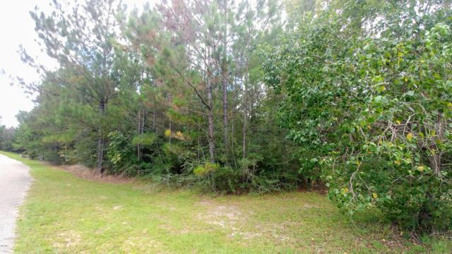 Lot 2 Skyline Drive, Poplarville, MS 39470 (MLS #339241) :: Keller Williams MS Gulf Coast