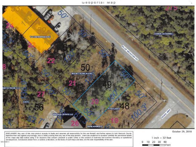 0 Blue Meadow Rd, Bay St. Louis, MS 39520 (MLS #340959) :: Coastal Realty Group