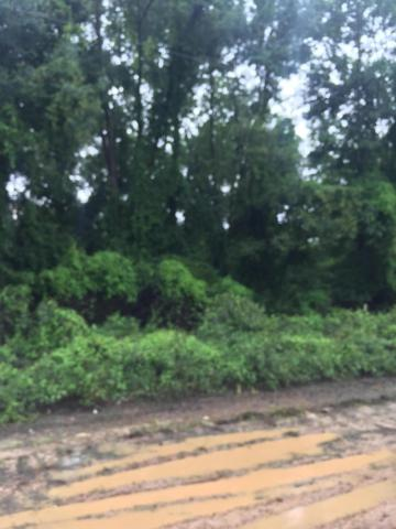 Lot 411 Holly Ln, Lucedale, MS 39452 (MLS #340989) :: Coastal Realty Group
