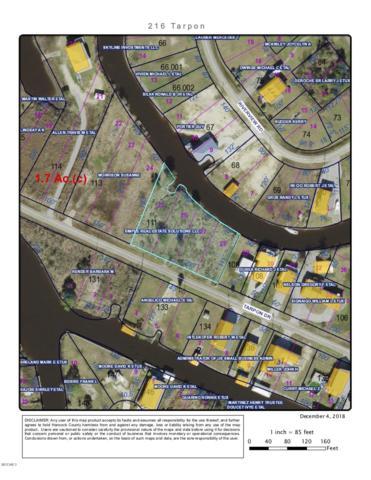 216 Tarpon Dr, Bay St. Louis, MS 39520 (MLS #341782) :: Amanda & Associates at Coastal Realty Group