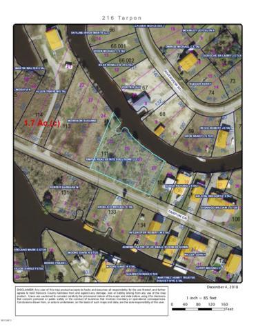 216 Tarpon Dr, Bay St. Louis, MS 39520 (MLS #341783) :: Amanda & Associates at Coastal Realty Group