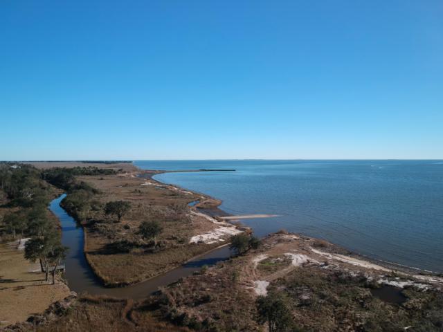 9525 Seacliff Blvd, Ocean Springs, MS 39564 (MLS #342424) :: Sherman/Phillips