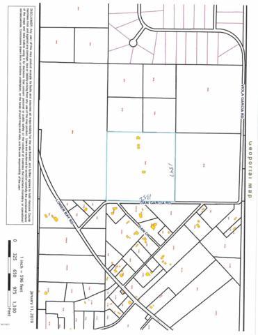 6067 Dan Garcia Rd, Bay St. Louis, MS 39520 (MLS #342868) :: Sherman/Phillips